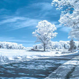 Plum Run Ir0050a by Guy Whiteley