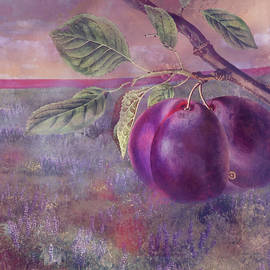 Plums by Jeff Burgess