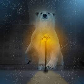Polar Bear - Daria Bogdan