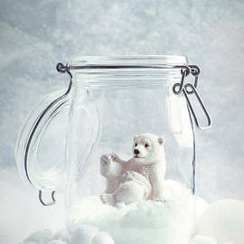 Polar Bear Snowglobe - Amanda Elwell