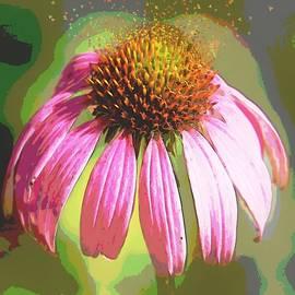 Stacey Simmons - Pollen Pop Art