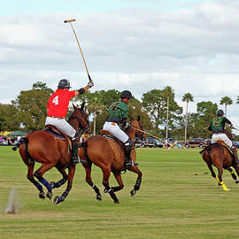 Sally Weigand - Polo Action