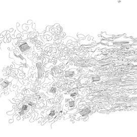 Polymer Fiber Spinning by Regina Valluzzi