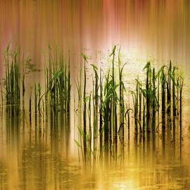 Jessica Jenney - Pond Grass Abstract