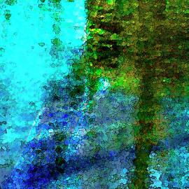 Pond Impressions by David Coblitz