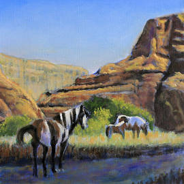 Ponies of the Canyon by David Zimmerman