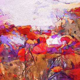Poppies in the Valley by Susan Maxwell Schmidt