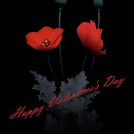 Spadecaller - Poppy Flower Valentine