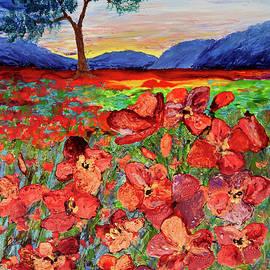 Patricia Beebe - POPpy Sunset