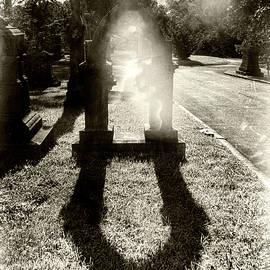 Portal by Sharon Popek