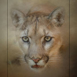 Teresa Wilson - Portrait of a Mountain Lion