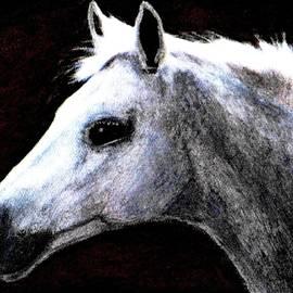 Angela Davies - Portrait Of A Pale Horse