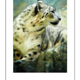 Mike Nellums - Portrait of a Snow Leopard poster