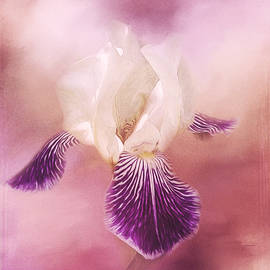 Possibilities - Iris Art