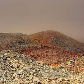 Post-Apocalypse by Marv Vandehey
