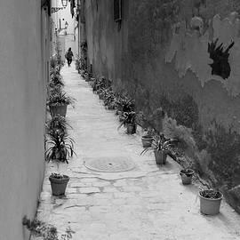 Pots Alley by Bob VonDrachek