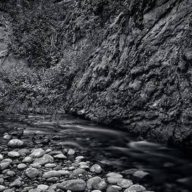 Powers Creek Flow Black and White by Allan Van Gasbeck