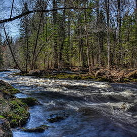 Prairie River White Riffles by Dale Kauzlaric