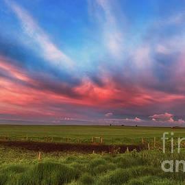 Prairie Skies - Ian McGregor