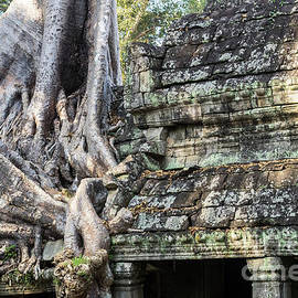 Rick Piper Photography - Preah Khan Roots and Stone 01