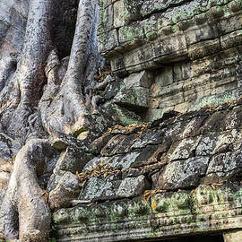 Rick Piper Photography - Preah Khan Roots and Stone 03
