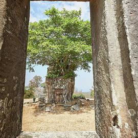 Stuart Taylor - Preah Vihear 19