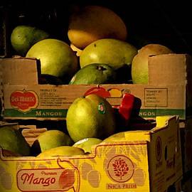 Premium Mango - Fruit in Late-Day Sun by Miriam Danar