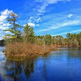 Catherine Melvin - Presumpscot River Gorham Maine