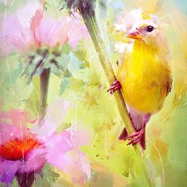 Tina LeCour - Pretty Goldfinch
