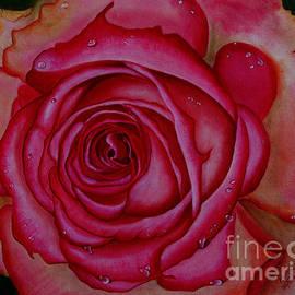 Pavitha Ashwin - Pretty In Pink