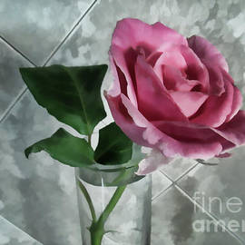 Pretty Pink Rose by Roberta Byram