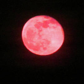 Pretty Red Moon by Tina M Wenger