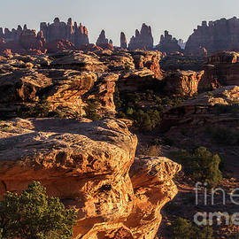 Prickle Ridge by Jim Garrison