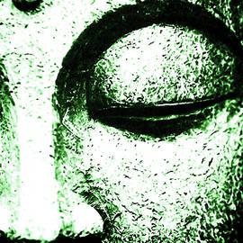 Sir Josef - Social Critic - ART - primary figure in Buddhism