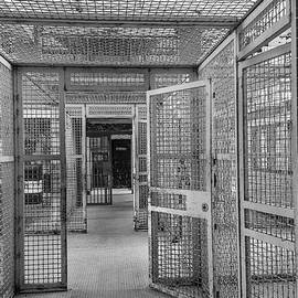 Prison Maze by Steven Bateson