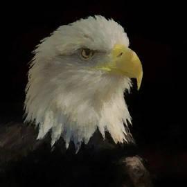 Ernie Echols - Profile of an American Bald Eagle