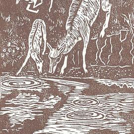 Pronghorns at Waterhole by Dawn Senior-Trask