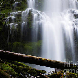 Proxy Falls Oregon 10 by Bob Christopher