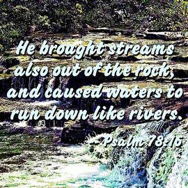 Psalm 78-16 - He Brought Streams ... by Susan Savad