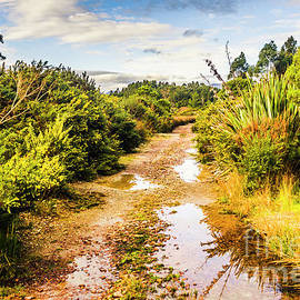 Puddles And Outback Tracks by Jorgo Photography - Wall Art Gallery