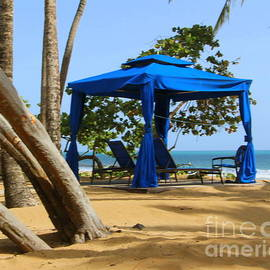 Puerto Rico Paradise by the Sea by Charlene Cox