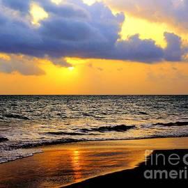 Charlene Cox - Puerto Rico Sunsets