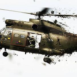 J Biggadike - Puma Shatter