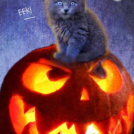 R christopher Vest - Pumpkin Kitty Eek