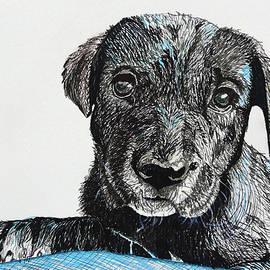 Maria Woithofer - Puppy 30