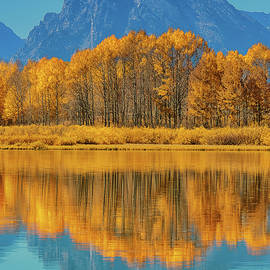 Luis A Ramirez - Pure Gold At Oxbow Bend