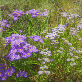 Lorraine Baum - Purple Asters