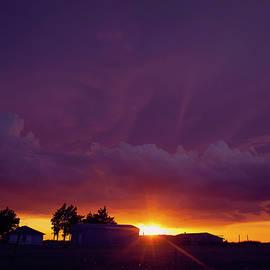 Purple Clouds by Toni Hopper
