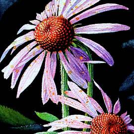 Hanne Lore Koehler - Purple Cone Flowers 1