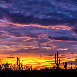 Purple Haze Sunset Skies  by Saija Lehtonen
